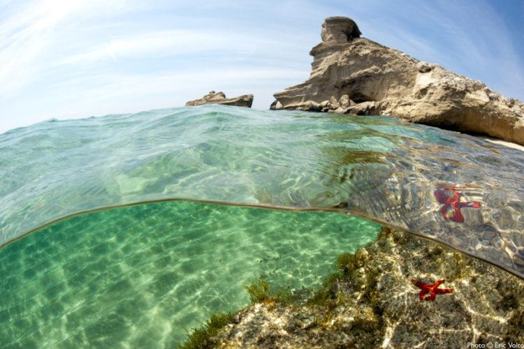 Plage, Sant'Antonio, turquoise, Bonifacio, Corse