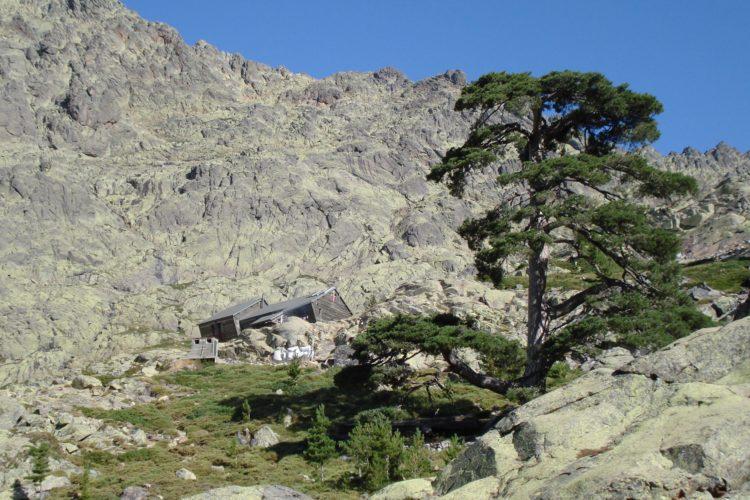 GR20-balade-sentier-corsica-refuge-foret-montagne.jpg