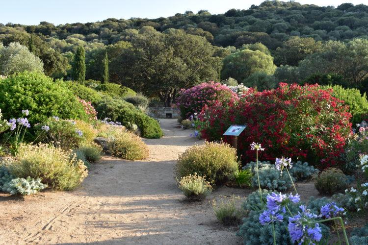 Parc-de-Saleccia-jardins-fleurs-corsica.jpg